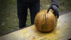 Wer braucht schon Halloween... Pumpkin, The Originals, Halloween, Food, Pumpkins, Essen, Meals, Squash, Yemek