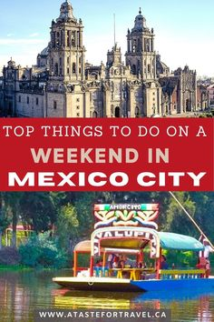 Gallery Weekend, Mexico City, Things To Do, Tops, Things To Make, Shell Tops, Todo List