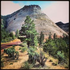Zion-Nationalpark (Utah)