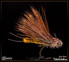 BIG StoneFly. By Micke Anderson