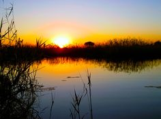 Beautiful sunset in the Caprivi strip Africa Travel, Us Travel, Mother And Father, World Traveler, Beautiful Sunset, Places To Go, Sunrise, Scenery, Journey