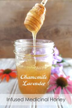 Chamomile & Lavender-Infused Medicinal Honey (Paleo, AIP) - A Squirrel in the Kitchen Medicinal Honey, Honey Uses, Honey Recipes, Drink Recipes, Easy Recipes, Healthy Recipes, Honey Syrup, Lavender Tea, Chamomile Tea