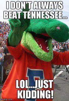 HAHA Tennessee lost to Gators 9 years in a row! Go gators! Uf Gator, Gator Game, Florida Gators Football, Football Is Life, College Football, Football Memes, Sports Memes, Football Players, Gatos