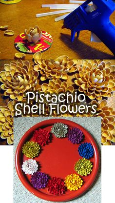 How to Use Pistachio Shells to Make Colored Flowers - http://diyforlife.com/how-to-use-pistachio-shells-to-make-colored-flowers/ - #Crafts, #Flowers, #PistachioShells