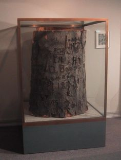 GC1CGK5 Daniel Boone Tree (Traditional Cache) in Kentucky, United States created by Mooseky