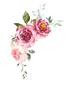 Bouquet of flowers rose. Design arrangement for textile or greeting card. Abstraction branch of flowers isolated on white background. Watercolor Plants, Watercolor Sketch, Watercolor Cards, Watercolor Flowers, Watercolor Paintings, Flower Frame, Flower Art, Flower Png Images, Framed Wallpaper