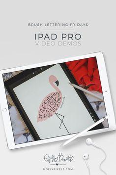 Brush Lettering Fridays - Procreate Lettering on iPad Pro - Flamingo Flock - Holly McCaig.