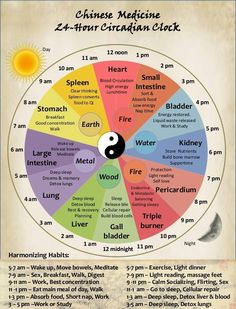 Chinese medicine. Pretty good representation of daily clock, with relevant detail.