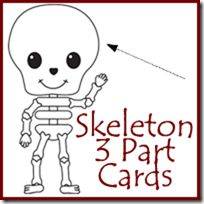 Skeleton Labeling 3 Part Cards