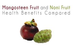 Mangosteen Fruit Versus Noni Fruit Health Benefits Compared. Which super fruit is better for your overall health? http://www.engineeredlifestyles.com/h/mangosteen-versus-noni-health-benefits.html #mangosteen #noni