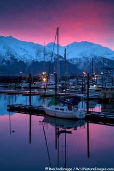 Seward, Alaska: My friend Mindy and I took a trip to Alaska. My favorite place was Seward where I went on a ride with sled dogs. We drove around the Kenai Peninsula going to Soldotna and Seward and then spent time in Anchorage. We went on a float plane ride and had a picnic too.