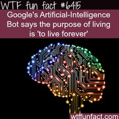 Google's Artificial-Intelligence - WTF fun facts