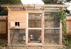 Walk-in chicken coop plans - The Garden Coop