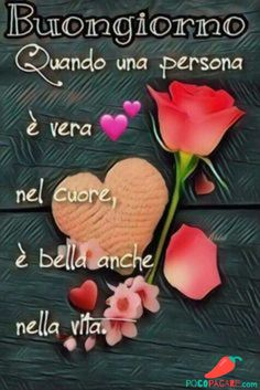 Italian Memes, Italian Quotes, Bon Mardi, Italian Greetings, Italian Phrases, Decir No, Good Morning, Place Card Holders, Top Tags