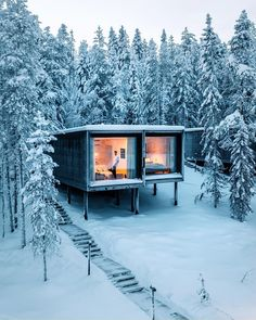 Who doesn't love a good tree house ? Swipe left to see some unreal scenes from Northern Lights Ranch. Northern Lights Ranch, Treehouse Hotel, Casas Containers, Sea Containers, Cool Tree Houses, Snowy Forest, Tiny House Design, Cabins In The Woods, Luxury Real Estate