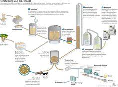 Herstellung Bioethanol