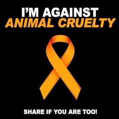 I am against animal cruelty!