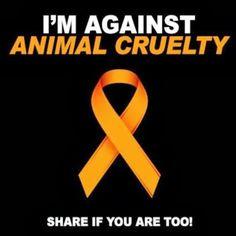 I am against animal cruelty!