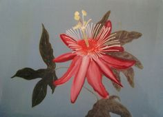 Aja original, commissioned; passion flower 2007: acrylic Passion Flower, Fine Art, The Originals, Flowers, Painting, Florals, Painting Art, Paintings, Painted Canvas