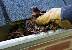 If you are looking for a seasoned professional to come and clean your gutters, then look no further: The Gutter Man Michael Simone offers top-notch gutter cleaning services in Northborough at a reasonable price. Factory Work, Copper Gutters, Cleaning Companies, Cleaning Services, Protecting Your Home, Gutter Cleaning, Estate Agents, Calgary, Minneapolis