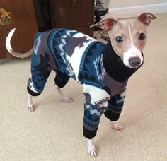 Italian Greyhound Pajamas - 'Aztec Moose Pajamas'. Small dog pajamas. Pet pajamas. Italian Greyhound Clothes. Pet clothing. Iggy clothes. by Duds4BudsToo on Etsy https://www.etsy.com/listing/478228965/italian-greyhound-pajamas-aztec-moose