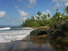 Carate Costa Rica - Get the best of both worlds with beautiful beaches and rainforests