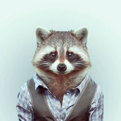 PERFECT.IMPERFECTION: ZOO PORTRAITS. GLI ANIMALI VESTITI di YAGO PARTAL