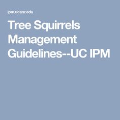 Tree Squirrels Management Guidelines--UC IPM