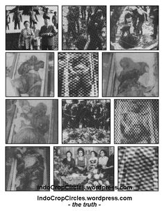 korban pki di lubang-buaya Alien Photos, Les Aliens, Ufo, Photo Wall, Conspiracy, Cool Stuff, History, Retro, Mysterious