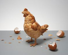 New meaning for which came first the chicken or the egg. A chicken made out of eggshells