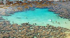 Map of orange beach on the alabama gulf coast gulf coast for Fish river grill fairhope al