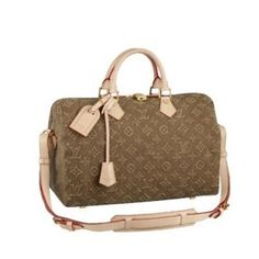 Louis Vuitton Speedy 35 Monogram Stone M40830