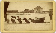 Louis Riel Photos Show Up At Australian Auction: Two sleds pulled by dogs at the Red River Settlement.