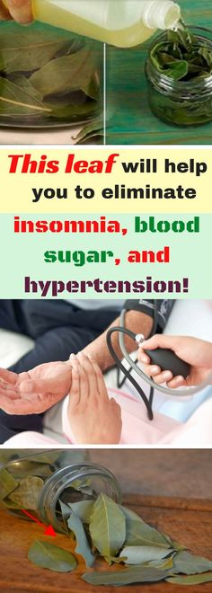 This leaf will help you to eliminate insomnia, blood sugar, and hypertension!