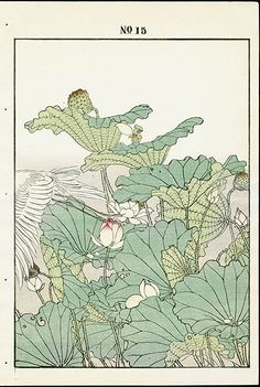 1891 Keinen Imao Woodblock 1st Edition Birds & Flowers Japan Botanical Art, Botanical Illustration, Illustration Art, Illustrations, Japanese Prints, Japanese Art, Photo Wall Collage, Collage Art, Poster Wall