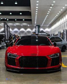 Audi R8 V10, Indian Scout, Super Sport Cars, Super Cars, Porsche Cayman 987, Bugatti, Maserati, Ford Transit Custom, Low Rider S