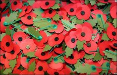 The Royal British Legion has launched this year's Poppy Appeal. Find out why people wear these special red flowers. Remembrance Poppy, Remembrance Sunday, Little Flowers, Red Flowers, November Flower, Poppy Craft, Royal British Legion, Online Florist, Flower Meanings