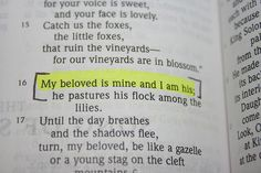 Song of Solomon 2:16. shawn dedicated this to me and sooo tat idea maybe?
