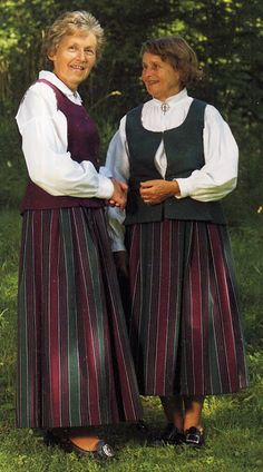 FolkCostume&Embroidery: Search results for norwegian costumes. everyday bunad for women Norwegian Clothing, Beautiful Costumes, Folk Costume, Norway, Embroidery, Oslo, Folk Art, Northern Lights, Ethnic