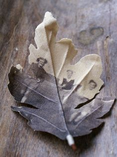 memory leaves--- old photos printed on unbleached canvas then cut and formed into leaves/flowers. Family tree idea?