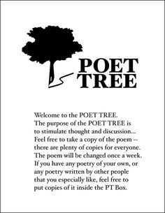 46 best poet tree ideas images on pinterest school school