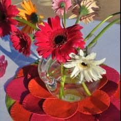 Gerber Daisies - party, shower, pink, tangerine