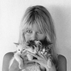 Brigitte Bardot in Mexico during the filming of Viva Maria, Bridgitte Bardot, I Love Cats, Crazy Cats, Cool Cats, Fondation Brigitte Bardot, Bardot Brigitte, Celebrities With Cats, Celebs, Tv Movie