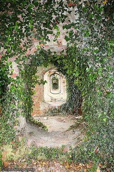 Brick Arches Ashton Keynes England - Ferreble Family (Westcott)