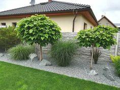 Garden Seating, Terrace Garden, Garden Paths, Backyard Patio Designs, Backyard Landscaping, Small Gardens, Outdoor Gardens, Small Garden Inspiration, Garden Makeover