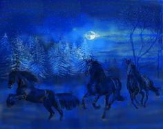 Pferde in der blauen Stunde