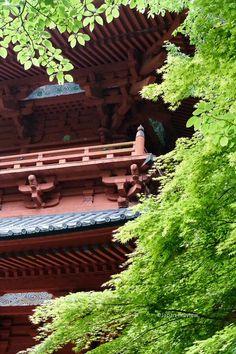 大門、高野山    Great Gate, Koyasan