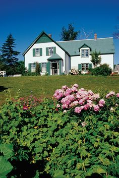 Prince Edward Island, Ca. The setting of Lucy Maude Montgomery's Anne of Green Gables:)