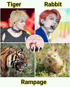 Lil bunny and a Lil tiger 🐰+🐯=💜 Memes Bts Español, Vkook Memes, Bts Meme Faces, Taekook, Bts Funny Videos, Bts Memes Hilarious, Bts Taehyung, Bts Jungkook, K Pop