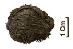 """Archaeologists working on the project shared images of the thread ball and bobbin on the project's Facebook page.  The photo of the first fiber object, a miniscule thread ball that still appears to be neatly wound, was posted on July 21, and the archaeologists described its condition as """"amazing"""